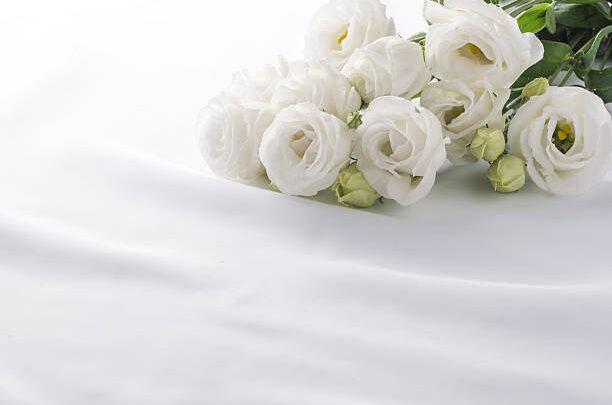 Kies voor de mooiste rouwbloemen Den Haag